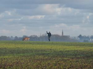 De superbes champs sur la commune de Plouedern. Costa et Annick sur fond de paysage breton dans la brume matinale.