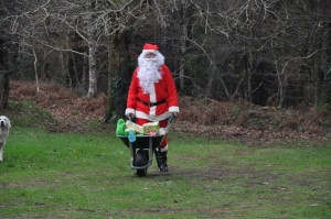 Surgi du bois de Kercadoret, le Père Noël pousse gaiement sa brouette.