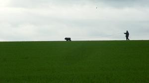 Des champs à perte de vue dans cette commune de Basse Normandie, limitrophe d'Argentan. Un plaisir pour les pisteurs.