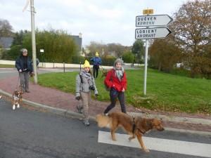 Traversée protégée sur le ronpoint route de Pont Scorff.