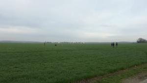 Les grandes parcelles de Brie. Le bonheur : du petit blé ! Le village de Saint Martin dans le fond. Pas besoin de se déplacer très loin.